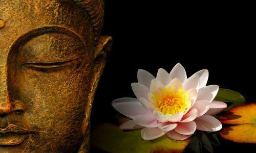 術・仏と蓮mental