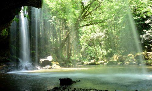 自然・Woods