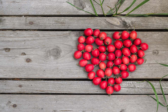 Red heart of hawthorn berries on a wooden background