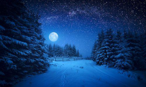 自然・雪と月Majestic winter forest