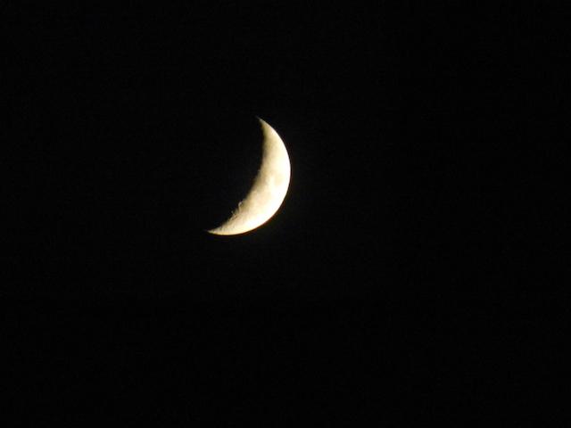 moon_light