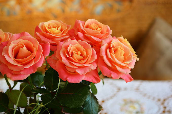 Bouquet of live orange-pink roses in vase on table.