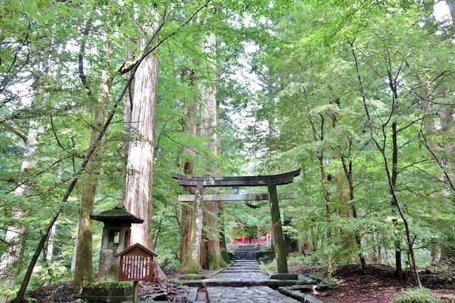 建・滝尾神社