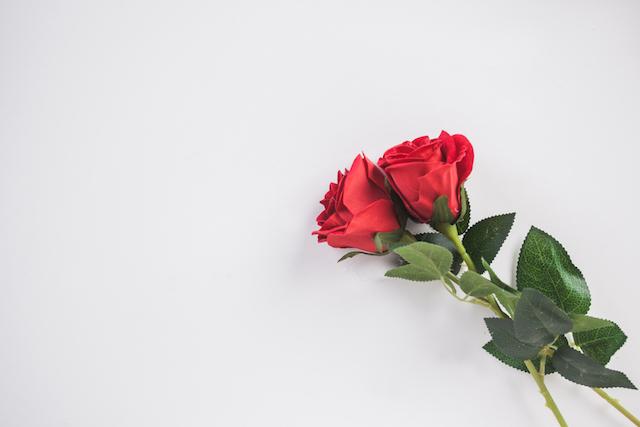 愛を呼び寄せる薔薇