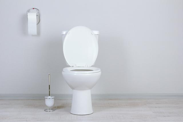 清潔 トイレ