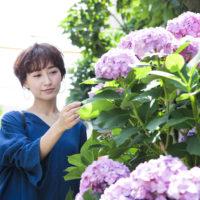 紫陽花と女性