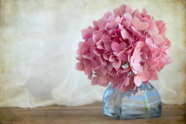 花瓶に入った紫陽花