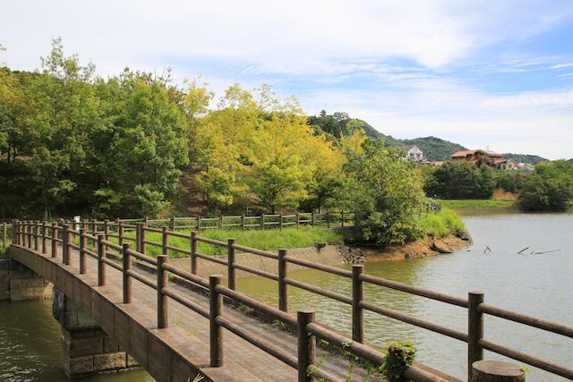 愛媛県宇和島 七宝の池