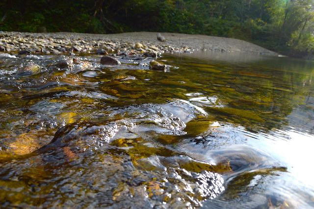 河原と流れ